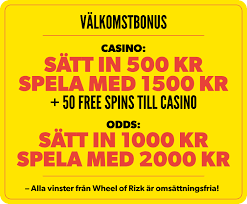 risk casino terms and conditions
